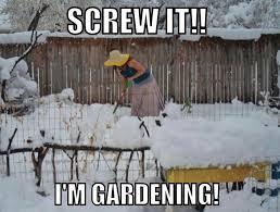 Colorado Weather Meme - momilies blog archive screw it i m gardening