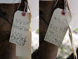 Wish Tree The Best Thing I Did All Year U2013 Superhero Life With Andrea Scher