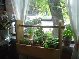 portable window herb garden growing herbs indoors pinterest