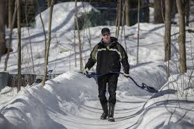 barrie dad builds 150 metre luge track in his backyard toronto star