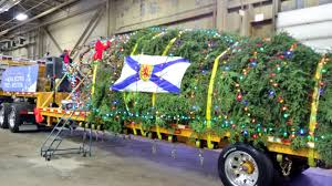 When Is The Parade Of Lights Storify Crowds Gather In Halifax For Annual Parade Of Lights And