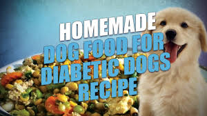 diabetic dog treats dog food for diabetic dogs recipe easy to make