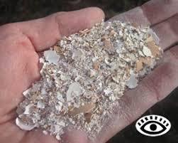 ground eggshells chicken management water shell grit gravel
