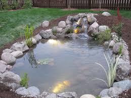 natural backyard ponds nualgi loversiq