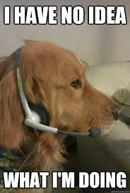Dog Phone Meme - i have no idea what i m doing xbox live dog quickmeme