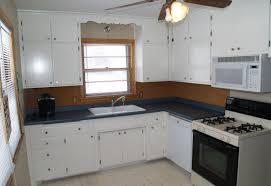 Kitchen Cabinet Refinishing Atlanta by Cabinet Painted Kitchen Cabinet Ideas Beautiful Paint Kitchen