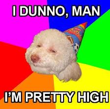 Birthday Dog Meme - stoned birthday dog meme generator