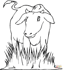 cow 23 coloring page free printable coloring pages