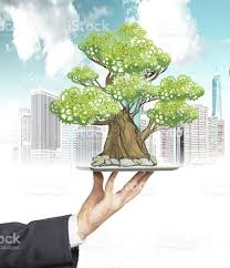 hand in formal suit holds tablet with a sketched tree stock photo
