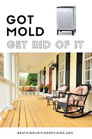 get rid of mold just spray this to get rid of mold safely