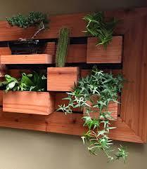 in stock modern large vertical succulent garden living wall