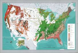 Types Of World Maps by Major Forest Types In The U S Maps United States Pinterest