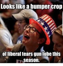 Funny Liberal Memes - funny memes tweets texags