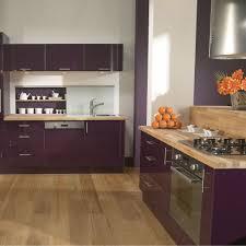 cuisine en violet cuisine violette pas cher sur cuisine lareduc com