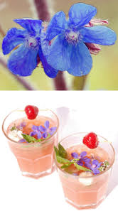 edible blue flowers identify edible flowers guide to edible flowers greens of