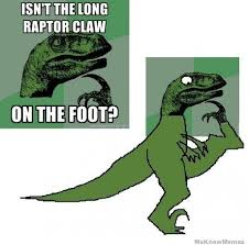 isnt the long raptor claw on the foot weknowmemes