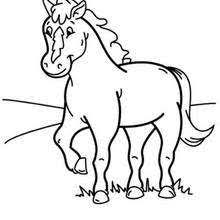 Pony Coloring Pages 13 Animals Of The World Coloring Books For Pony Color Pages