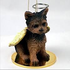 terrier yorkie puppy cut miniature