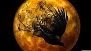 halloween 4k background halloween raven hd desktop wallpaper widescreen high
