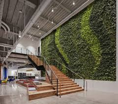 Office Wall Design Green Walls A Cool Design Accent For Offices With Personality