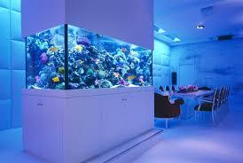 fish aquarium coffee table u2013 golead