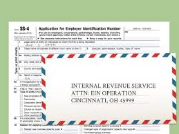 tax id lookup by business name business registratio lookup