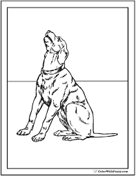 dog breed coloring pages printable coloring pages ideas