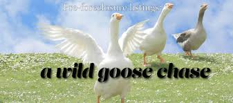 foreclosure listings are wild goose chases for clients
