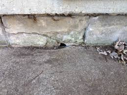 Concrete How To Plug Hole In Foundation Home Improvement