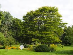membership benefits friendship botanic gardensfriendship botanic