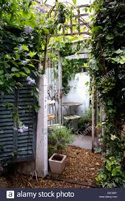 Garden With Trellis Blue Louvre Doors And Shed Covered With Ivy In Small Garden With