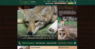 Oklahoma wild animals images Home wildcare foundation jpg