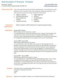 Resume Summary Examples For Software Developer by Resume Summary Examples Software Developer Create Professional