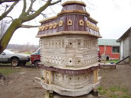 familycorner forums view single post birdhouses and lawn