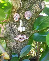 15 best tree faces images on tree faces garden