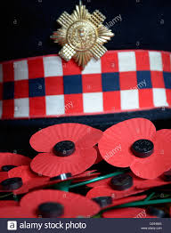 scots guards dress cap in a sea of poppies stock photo royalty
