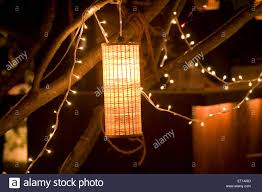 artificial light l and small bulbs hanging from a tree light