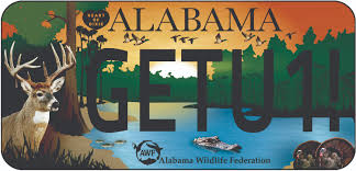 Alabama wildlife images Wildlife tag awf jpg