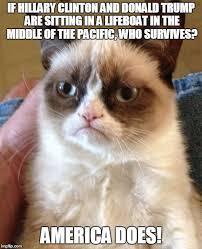 Cat Sitting Meme - grumpy cat politics imgflip