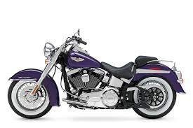 gallery of harley davidson softail deluxe