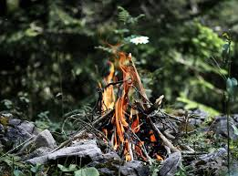 How To Make A Campfire In Your Backyard Campfires Explained Vox