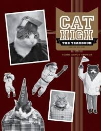 cat high yearbook cat high the yearbook by terry deroy gruber paperback barnes