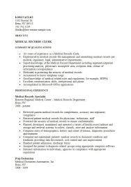 Sample Resume For Clerk by File Clerk Resume Examples File Clerk Resume Example