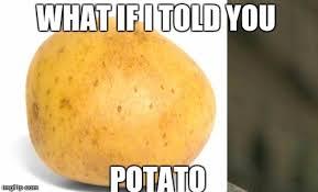 What If I Told You Potato Meme - matratato imgflip