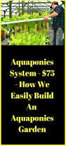 best 25 aquaponics system ideas on pinterest aquaponics