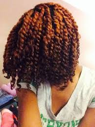 human hair using twists the 25 best two strand twists ideas on pinterest two strand