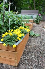 growing vegetables in the pacific nw gardening