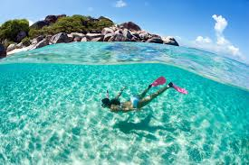 Hawaii Snorkeling images Waikiki snorkel rentals free delivery hawaii beach time jpg