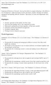Security Specialist Resume Sample by Professional Director Of Security Templates To Showcase Your
