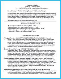 Resume Samples Product Manager by Resume Samples For Information Security